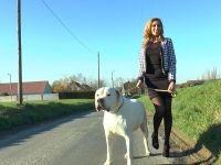 Sherine, beurette bourgeoise, enculée dans les bois derrière chez ses parents à Vernon ! (vidéo exclusive)